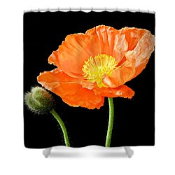 Magnificent Simplicity  Shower Curtain