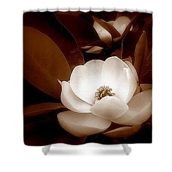 New Orleans Magnolia Beauty Shower Curtain