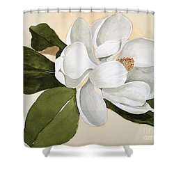Shower Curtain featuring the painting Magnolia Bloom by Nancy Kane Chapman