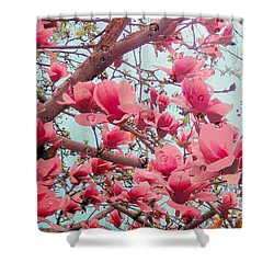 Magnolia Blossoms In Spring Shower Curtain