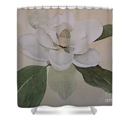 Shower Curtain featuring the painting Magnolia Delight by Nancy Kane Chapman