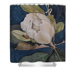 Shower Curtain featuring the painting Magnolia Evening by Nancy Kane Chapman