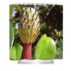 Magnolia Faith  Shower Curtain