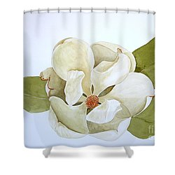 Shower Curtain featuring the painting Magnolia Highlight by Nancy Kane Chapman