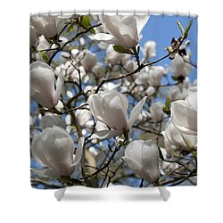Magnolia Shower Curtain by Lana Enderle