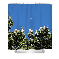 Shower Curtain featuring the photograph Magnolia Moon by Meghan at FireBonnet Art