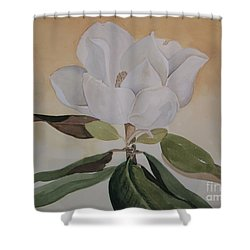 Shower Curtain featuring the painting Magnolia Morning by Nancy Kane Chapman
