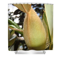 Magnolia Serenity - Signed Shower Curtain