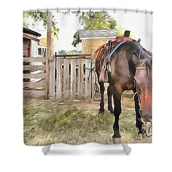 Shower Curtain featuring the painting Mahaffie Stagecoach Stop And Farm by Liane Wright