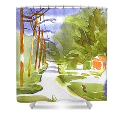 Main Street On A Cloudy Summers Day Shower Curtain by Kip DeVore