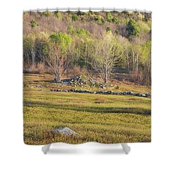 Maine Blueberry Field In Spring Shower Curtain by Keith Webber Jr