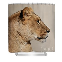 Majestic #2 Shower Curtain