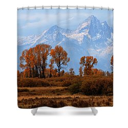 Majestic Backdrop Shower Curtain