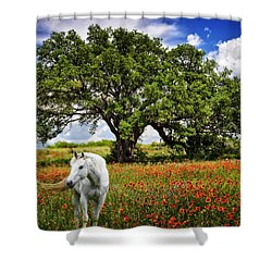 Majestic Beauty Shower Curtain