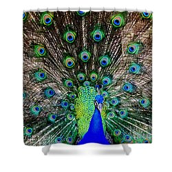 Majestic Blue Shower Curtain by Karen Wiles