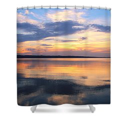 Majestic Mirror Shower Curtain by Rachel Cohen
