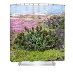 Majestic Shoreline Shower Curtain
