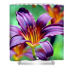 Shower Curtain featuring the photograph Majesty by Deena Stoddard