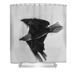 Majesty Shower Curtain by Linda Unger