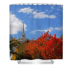 Majesty Shower Curtain by Lynn Bauer