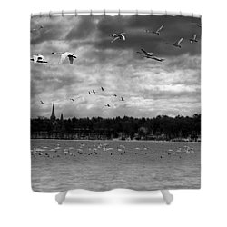 Major Migration Shower Curtain by Thomas Young