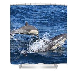 Make A Splash Shower Curtain