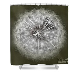 Shower Curtain featuring the photograph Make A Wish by Peggy Hughes