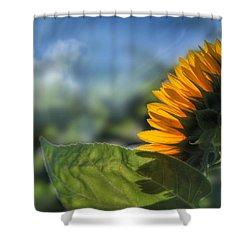 Make Each Day Count Shower Curtain by Lori Deiter
