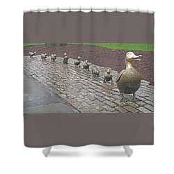 Make Way For Ducklings Shower Curtain by Barbara McDevitt