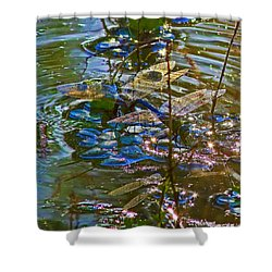 Shower Curtain featuring the photograph Making A Deposit For The Future by Gary Holmes
