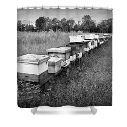Making Honey II Bw Shower Curtain