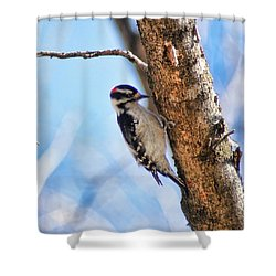 Making Sawdust Shower Curtain by Rick Friedle