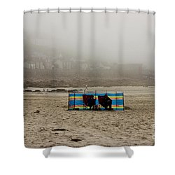 Making The Most Of Their Holiday Shower Curtain by Terri Waters