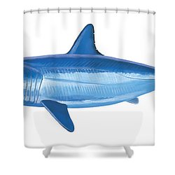 Mako Shark Shower Curtain by Carey Chen