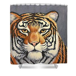 Malayan Tiger Portrait Shower Curtain