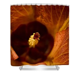Maldivian Flower Shower Curtain by Dee Cresswell