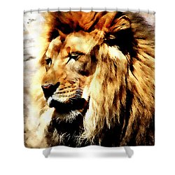 Shower Curtain featuring the painting Male African Lion by Jennifer Muller