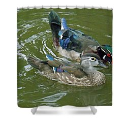 Male And Female Wood Ducks Shower Curtain