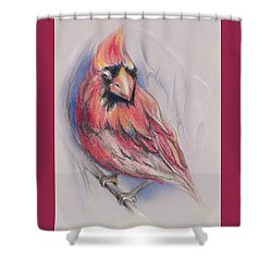 Shower Curtain featuring the pastel Male Cardinal In Winter by MM Anderson