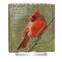 Male Cardinal On Twigs With Bible Verse Shower Curtain by Debbie Portwood
