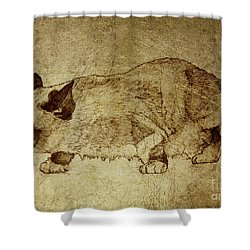 Male Cat Hunts At Night Shower Curtain
