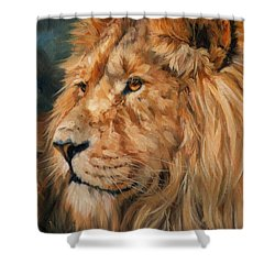 Male Lion Shower Curtain by David Stribbling