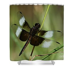 Male Widow Skimmer Dragonfly Shower Curtain by Judy Whitton