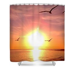 Malibu Paradise Shower Curtain