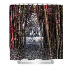 Malice In Wonderland Shower Curtain