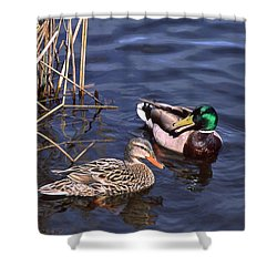 Mallard Mates Shower Curtain