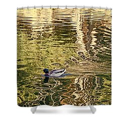 Shower Curtain featuring the photograph Mallard Painting by Kate Brown
