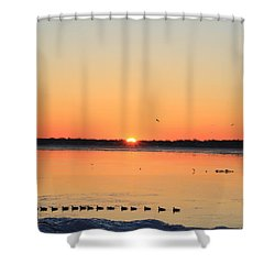 Mallards At Sunrise Shower Curtain
