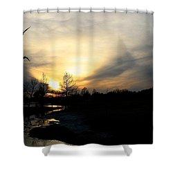 Mallards Silhouette At Sunset Shower Curtain
