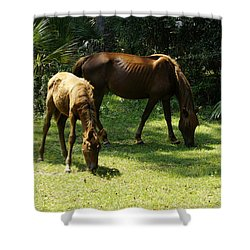 Mama And Baby Shower Curtain